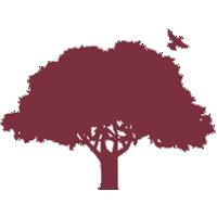 Oldbury Park Primary RSA Academy logo